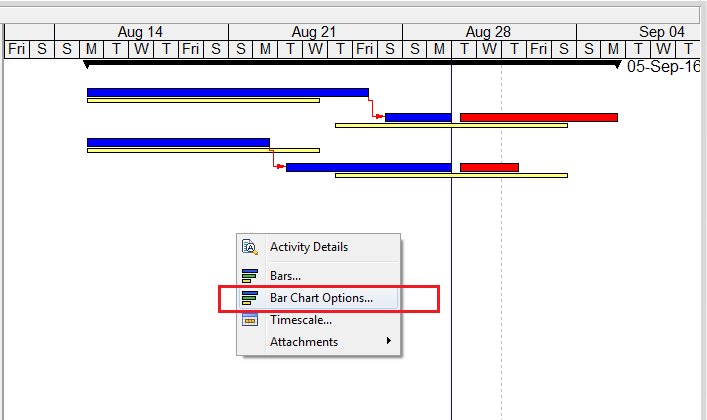 Compare Actual Progress with Baseline on Gantt chart in Primavera P6 - 2
