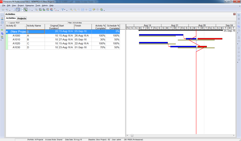 Compare Actual Progress with Baseline on Gantt chart in Primavera P6 - 5