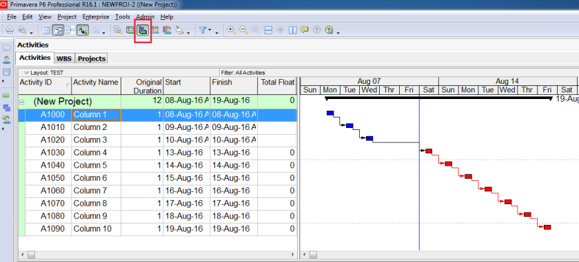 How to use Earned Value Management in Primavera P6 - 12