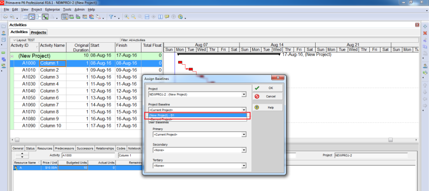 How to use Earned Value Management in Primavera P6 - 3