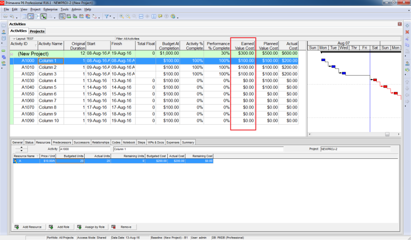 How to use Earned Value Management in Primavera P6 - 6