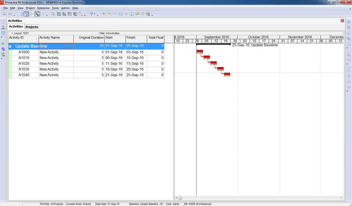 How to update Baseline in Primavera P6 - 1