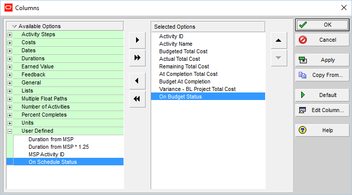 How to quickly identify Behind Schedule and Over Budget activity by Indicator UDF in Primavera P6-12