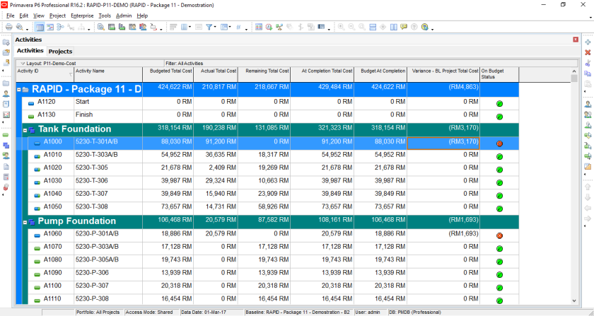 How to quickly identify Behind Schedule and Over Budget activity by Indicator UDF in Primavera P6-13