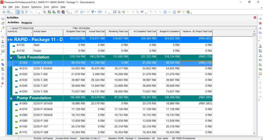 How to quickly identify Behind Schedule and Over Budget activity by Indicator UDF in Primavera P6-9