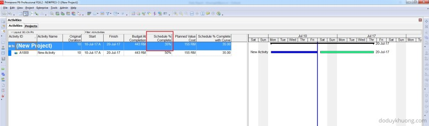 How does Primavera P6 calculate Planned Value Cost for Activities with Resource Curves in Earned Value Management-11