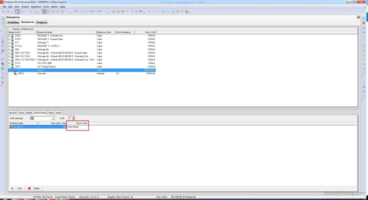 How to change currency in Primavera P6 and How is data stored when using multiple currencies-12
