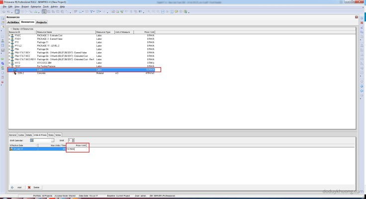 How to change currency in Primavera P6 and How is data stored when using multiple currencies-4