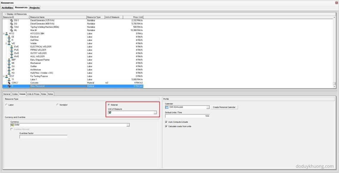 Why is Unit of Measure not showing in Resource Usage Profile in Primavera P6-2