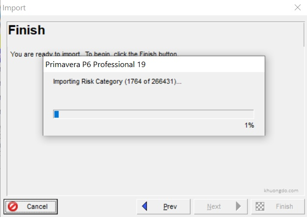 Primavera P6 XER Import is slow  hanged when importing Risk Category and How to avoid-1